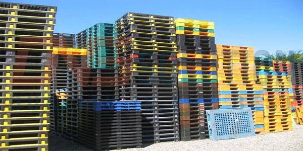Pallet nhựa ngày càng được sử dụng rộng rãi ở nhiều doanh nghiệp